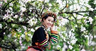 Lễ hội hoa ban - Điện Biên